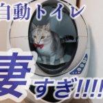 【全自動猫トイレ】キャットロボットオープンエアーが凄すぎた!