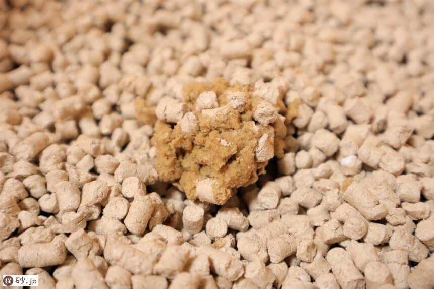 トイレに流せる木製猫砂(固まり具合)