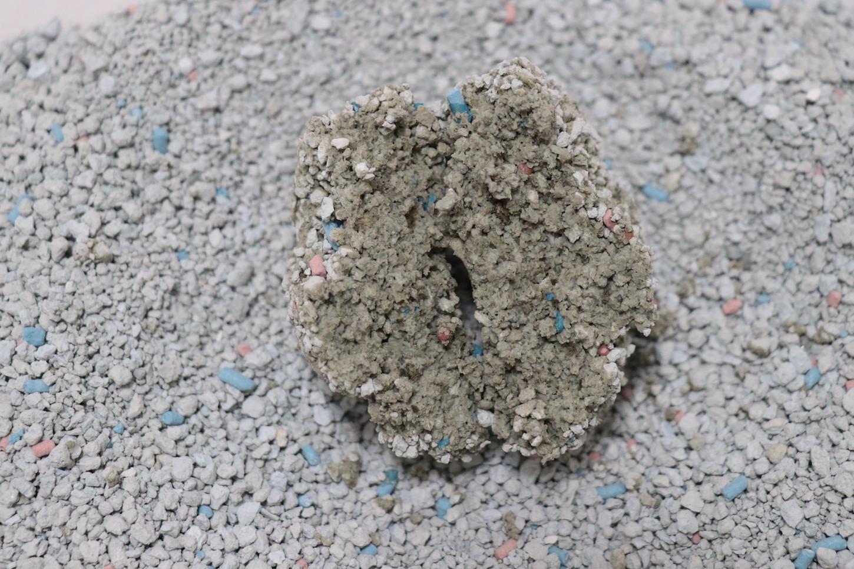 フォーキャットゴールドの尿を固めた砂