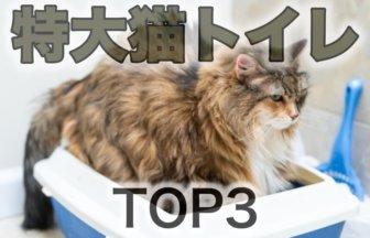 特大猫トイレ