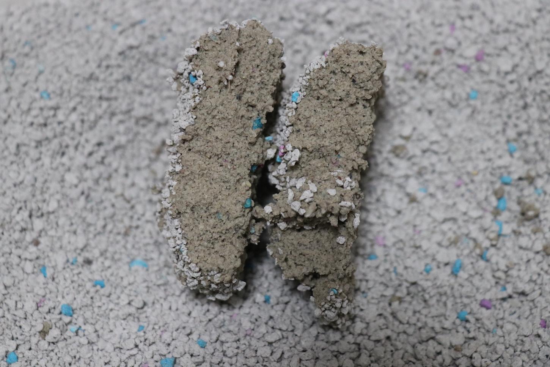 LIFELEXベントナイト固まる猫砂(固まりの断面)