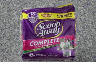 scoop away