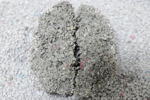 あまえんぼ固まる猫砂の尿の固まり断面