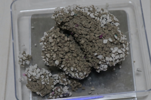 ドンキホーテ固まる猫砂の固まり断面
