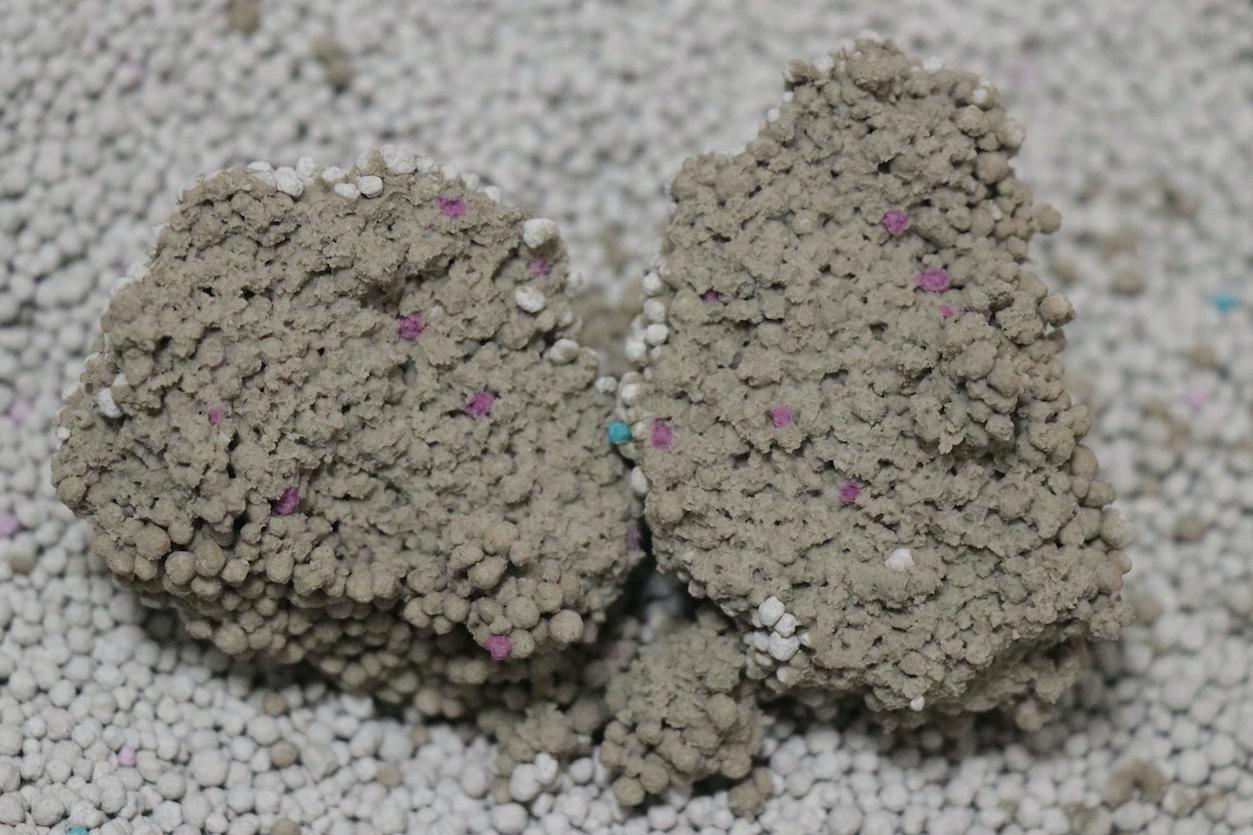 コーナンオリジナル 固まる猫砂 ふんわりソープの香りの固まり断面
