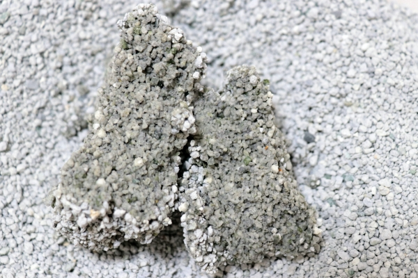 猫砂1番の尿の固まり断面