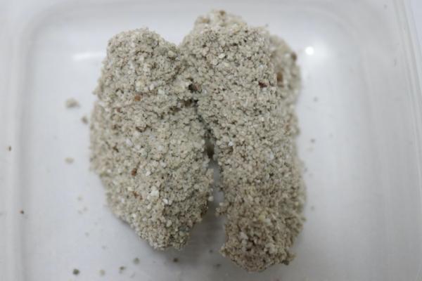 セリームバイオサンドホワイトの尿の固まり断面